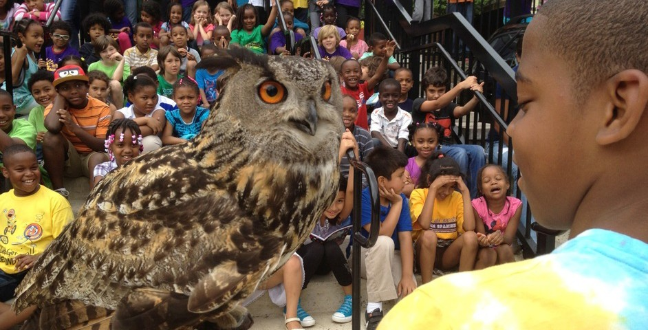 Students and an owl